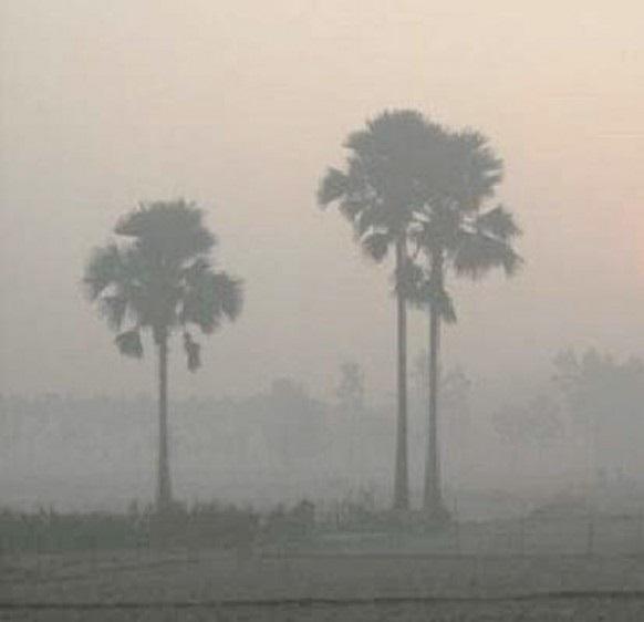কুয়াশার আবরণে ঢাকা উত্তরাঞ্চল, নেই শীতের দেখা